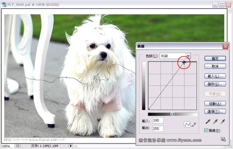 Photoshop 影像設計 Photoshop 後製修圖  - Photoshop 教學 - 曲線 - 亮度調整 - 入門篇【一】 - curve_03_652