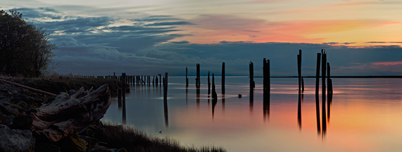 River Sentinels at Brunswick Point, Ladner, British Columbia :: Flyfishers' Arte & Publishing