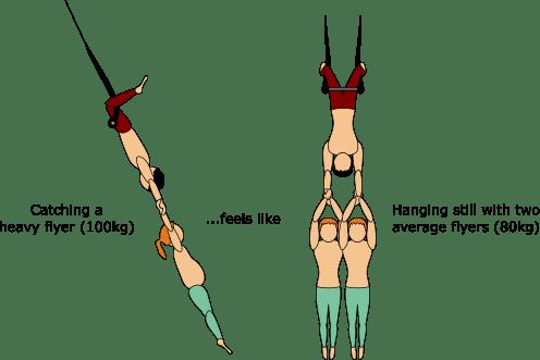 the trapeze net investigation