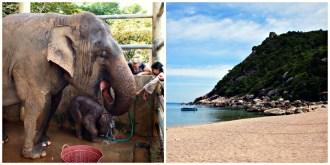 Noord of Zuid Thailand