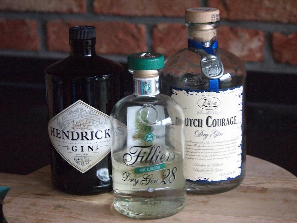 Perfecte Gin Tonic begint met een goede Gin
