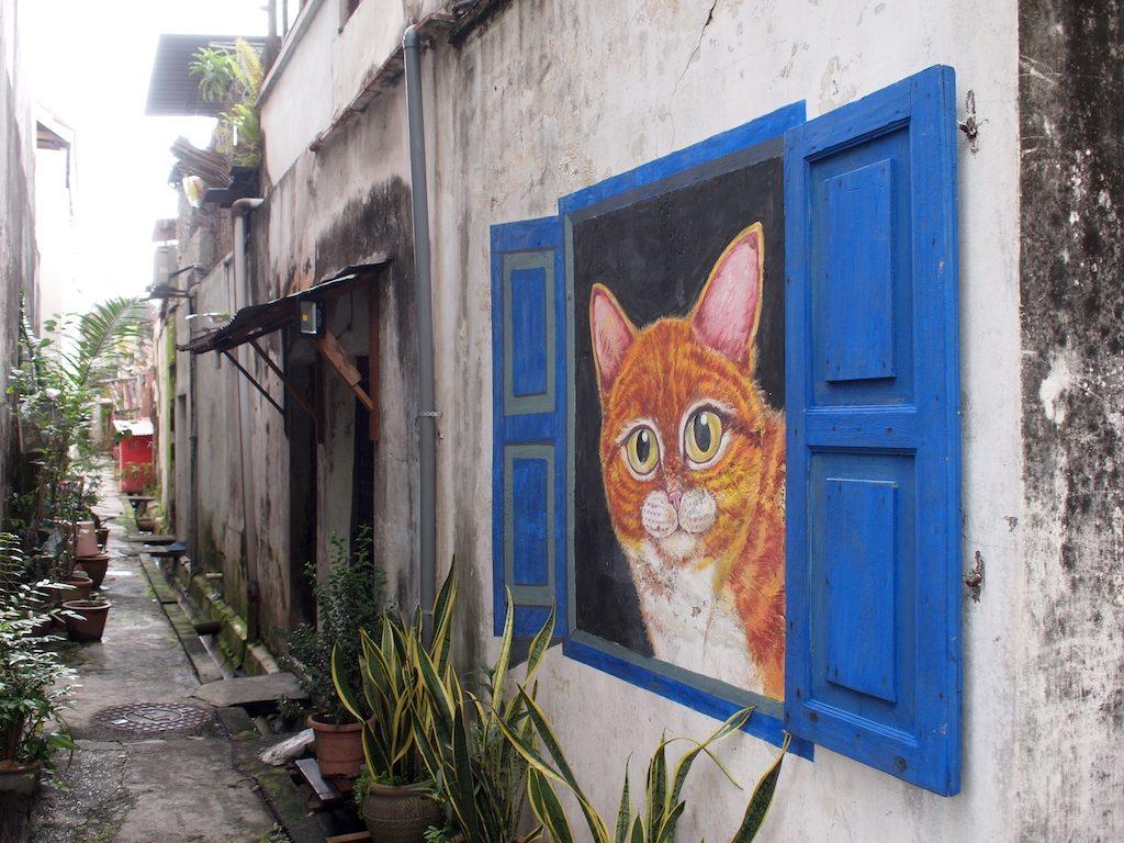 Street art George Town Armenianstreet rode kat in vensterbank