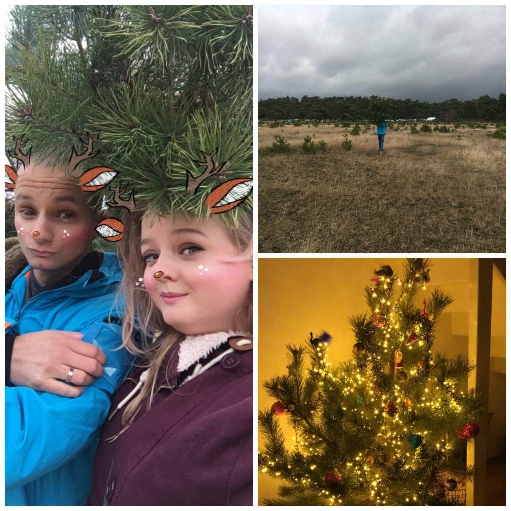 Weekly Highlights 10 kerstboom op de veluwe