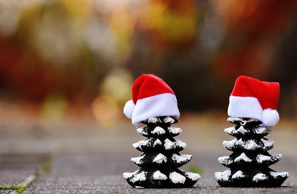 kerstboomjes met mutsen