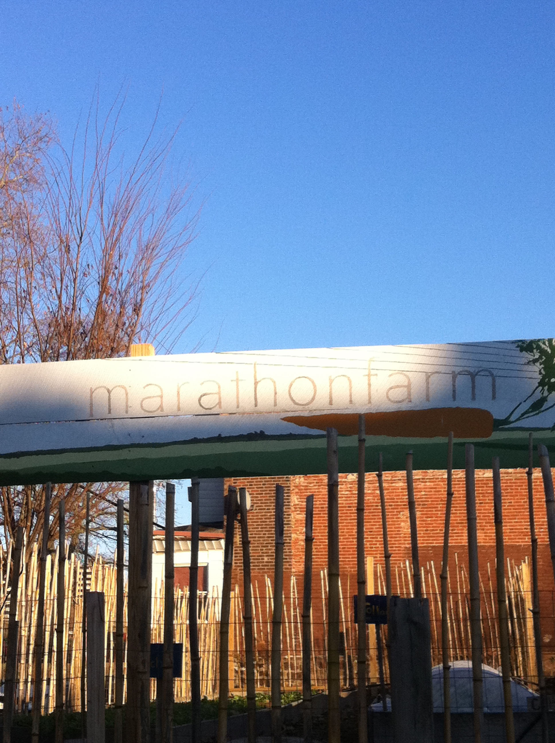 Welcome Back To Brewerytown: Lots Of New Options For Living, Business And  Vitality In 2012
