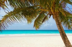 Top 5 Winter Sun Holidays For Families