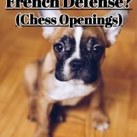 The French Defense - Learn a Top 3 Chess Opening for Black