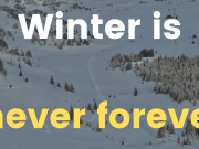 POETY 13 - Winter is Never Forever (FLYINTOBOOKS.COM)