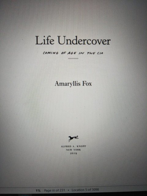 Amaryllis Fox - Life Undercover second page