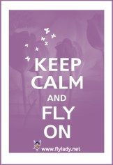 Image result for flylady.net