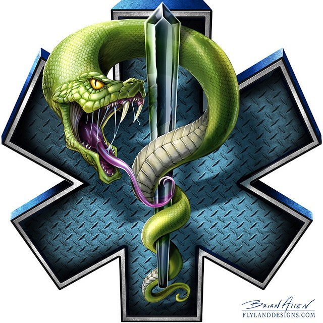 Illustration graphic I created for Great Dane Graphics featuring a snake weaving around the EMS symbol.