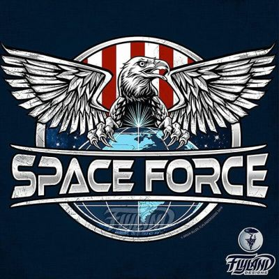Exciting news! Some guy in a trenchcoat hired me in a dark parking garage to create the logo for the US government Space Force! Let's grab space by the balls with our tasty talons of freedom! Grab it on a t-shirt at https://traxlertees.com/products/space-force-unisex-t-shirt #spaceforce #emblem #patchdesign #patchart #patriotic #eagleart