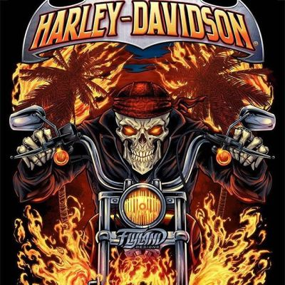 And here's the final Harley Davidson artwork I created of a skeleton biker riding through flames. Man, what a fun series - so fortunate to be a part of it. I hope it's something that we can do every year.#harleydavidsonart #harleydavidsonmotorcycles#appareldesign #tshirtdesign #tshirtartist #screenprintart #dtg#skullart #skulls #skulldesign #darkartist #darkart #skullartwork