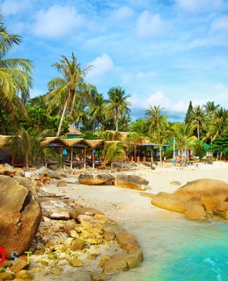 bahamas beach tour