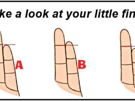 Personality Depending Your Fingers' Shape