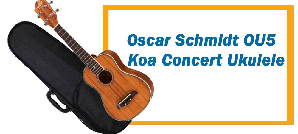 Best concert ukulele for beginners