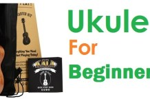beginners ukulele