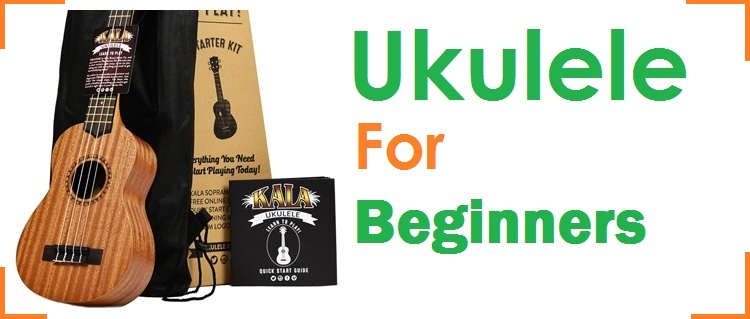 The Best Beginner Ukuleles in the Total Marketplace