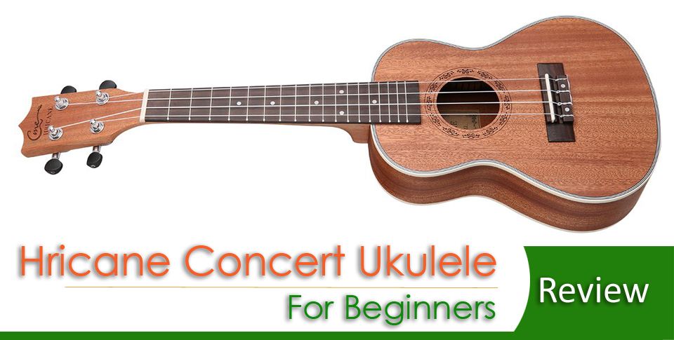 Best Concert Ukulele for Beginners