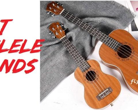 Best ukulele brands