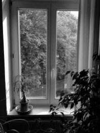 Fünf Fenster - No. 1 || Foto: Ulf Cronenberg, Würzburg