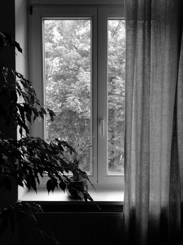 Fünf Fenster in Schwarzweiß