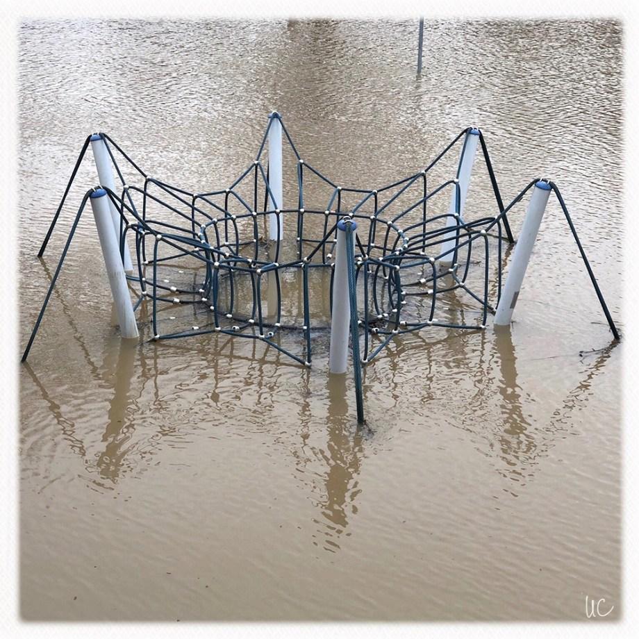 Würzburg– Hochwasser am Main