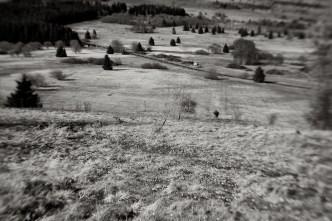 Hochmoor in der Rhön // © Ulf Cronenberg, Würzburg