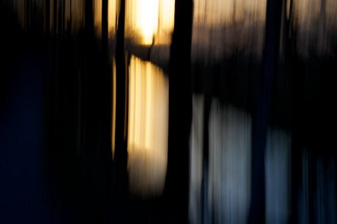 Sonne durch die Bäume fotografiert, Spiegelung in Bach || Foto: © Ulf Cronenberg, Würzburg