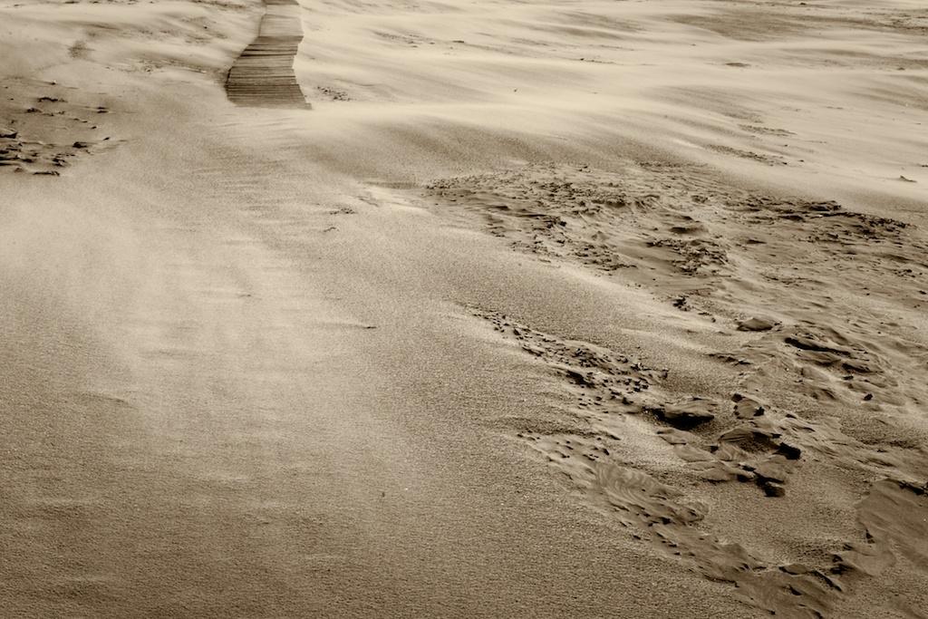Holzstege am Strand, Bergen aan Zee– No. 2 // Foto: © Ulf Cronenberg, Würzburg