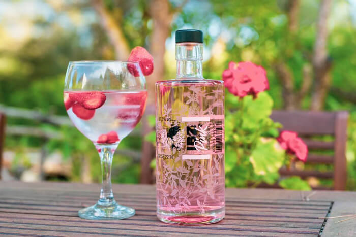 IBZ Pink Strawberry Gin - Familia Marí Mayans