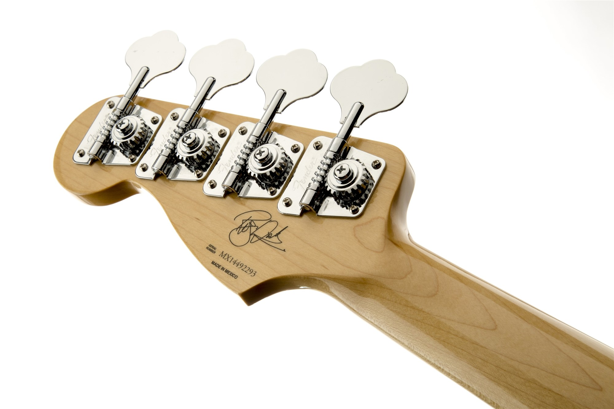 hight resolution of roger waters precision bass