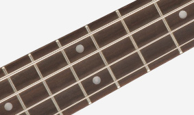 PEARLOID DOT INLAYS