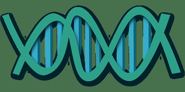 Seres humanos genéticamente modificados