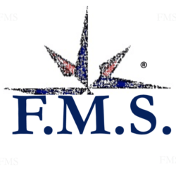 F.M.S. Consulting