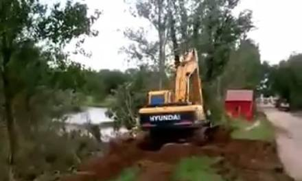 Trabajos de limpieza en el canal