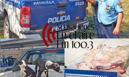 Policiales- Robo en la zona rural de Cabrera