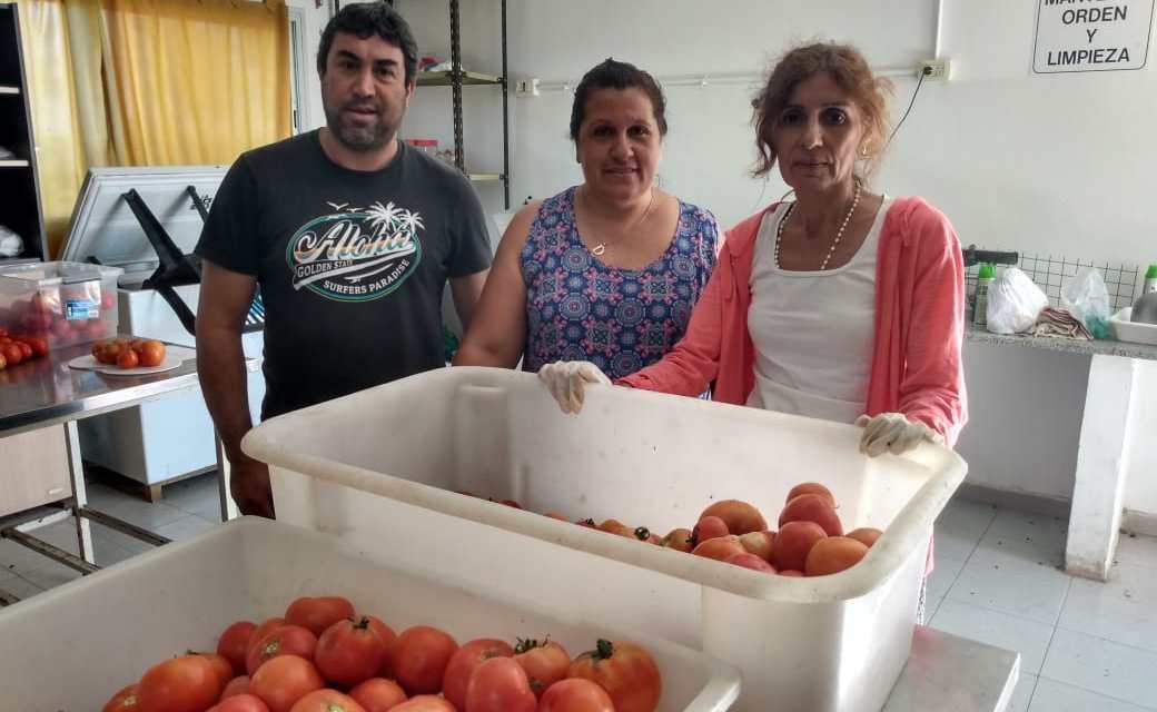 IPEA 291 – Venta de tomates como los que «cosechaba la abuela»…