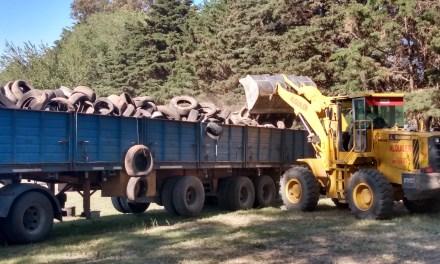 Se realizó primer carga de neumáticos en desuso para la empresa WORMS