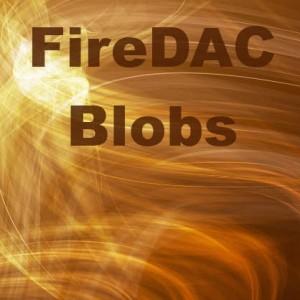 Delphi XE5 Firemonkey FireDAC Blobs