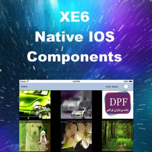 Delphi XE6 Firemonkey Native IOS Components