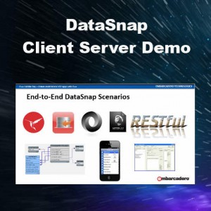 Delphi XE6 Firemonkey DataSnap Client Server