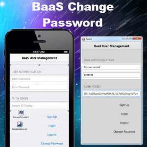 Delphi XE6 Firemonkey BaaS Login Change Password