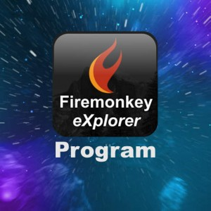 Delphi Firemonkey Explorer Program