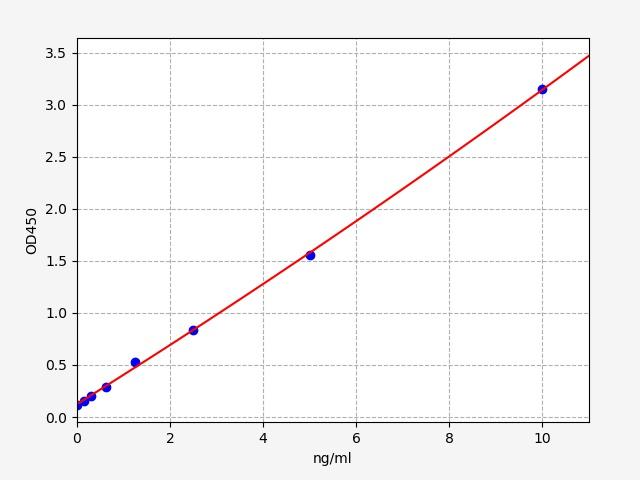Rat Reg3b(RegeneRating islet-derived protein 3-beta) ELISA