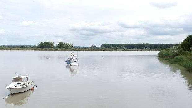 L'estuaire de la Loire est un espace complexe, lieu de multiples interfaces entre fleuve, océan, rives et bassin versant qui sont à l'origine d'une importante diversité biologique. Il est important […]