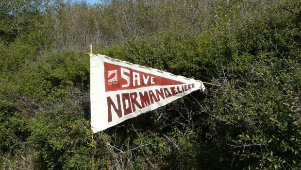 La semaine dernière, le juge des référés du tribunal administratif de Nantes a rejeté un recours visant à suspendre l'autorisation environnementale du projet de port de plaisance de Brétignolles-sur-Mer. Cette […]