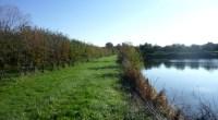 Sur demande des associations du mouvement France Nature Environnement, le tribunal administratif de Nantes vient d'exiger de 4 préfets de département des Pays de la Loire qu'ils complètent les arrêtés […]