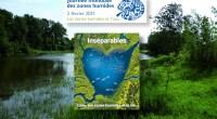 Comme chaque année, le 02 février marque la journée mondiale des zones humides. En 2021, sur le thème «les zones humides et l'eau», de nombreux évènements sont organisés afin de […]