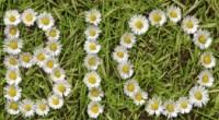 Par un arrêté publié le 7 mars, le gouvernement a annoncé une baisse de 25% de l'aide au maintien de la bio pour l'année 2014 (mesure «soutien à l'agriculture biologique» […]